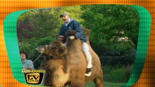Tv total platz 6: raab in gefahr zoo ganze folgen online schauen
