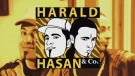 Harald, Hasan & Co.