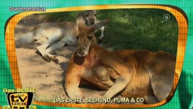 TV total Lieblingsausschnitte Teil 4 Ganze Folgen