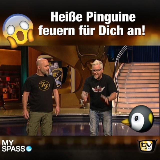 Heiße Pinguine feuern für Dich an!