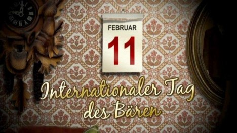 Internationaler Tag des Bären