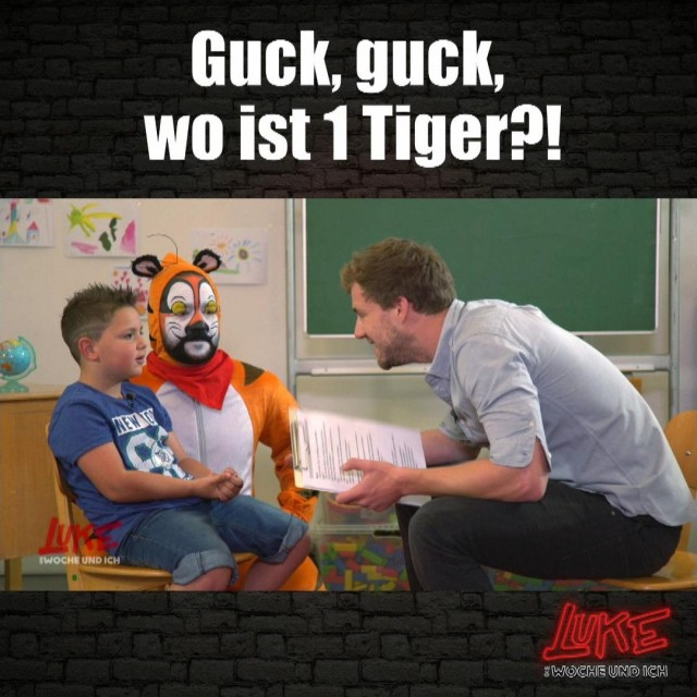 Guck, guck, wo ist 1 Tiger?!